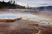 Yellowstone Mammoth hot spring's upper terrace basin, features white deposits and colorful microorganisms