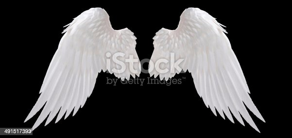 istock angel wing 491517393