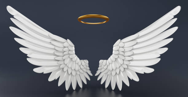 Angel wings and golden halo isolated on black stock photo