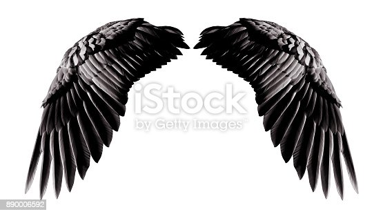 istock Angel wings, Natural black wing plumage isolated on white background with clipping part 890006592
