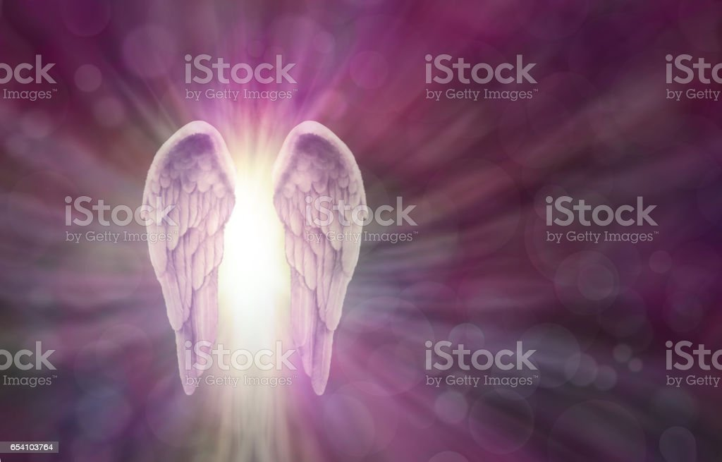 Angel Wings on Magenta Bokeh Banner stock photo
