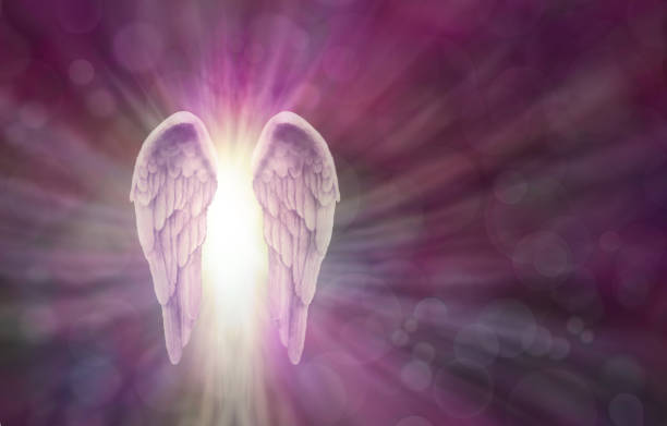 angel wings on magenta bokeh banner - angel stock photos and pictures