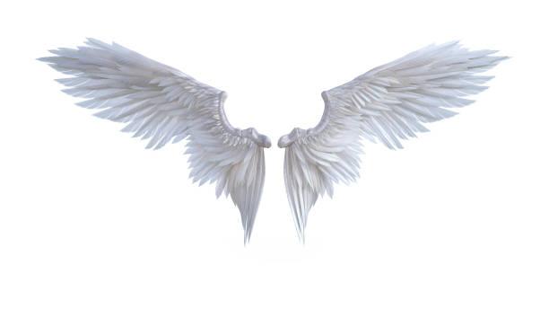Engel vleugels foto
