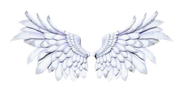 Angel Wings stock photo