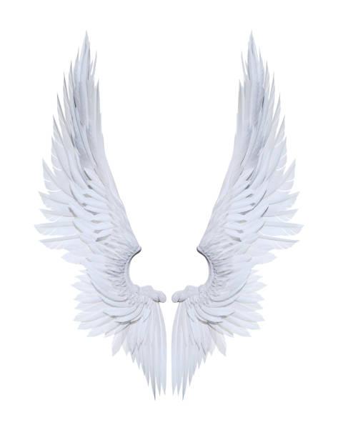 Engel vleugels, witte vleugel verenkleed geïsoleerd op witte achtergrond foto