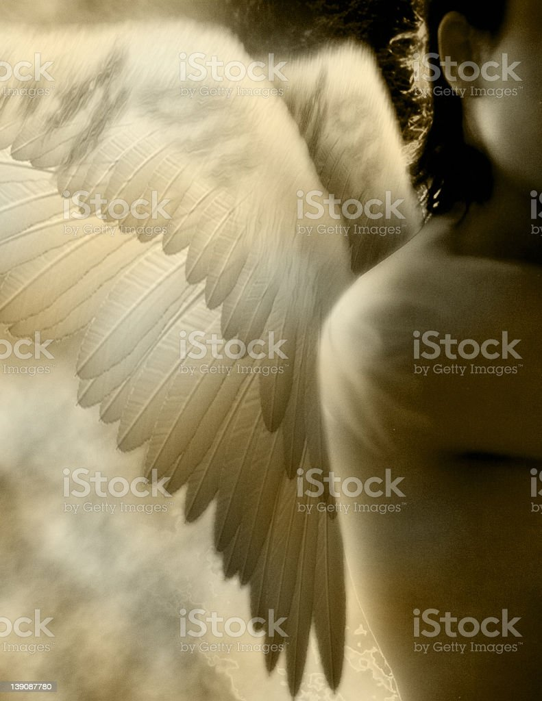 Angel with wings in sepia tones royalty-free stock photo