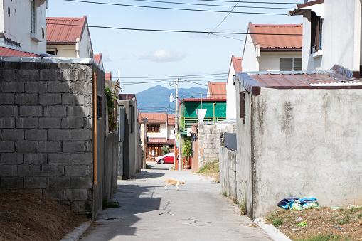 istock Angeles City Neighborhood on Hill Overlooking Mt. Arayat - Philippines 1264586770