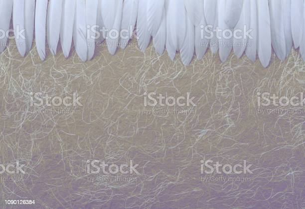 Angelic white feather header gold background picture id1090126384?b=1&k=6&m=1090126384&s=612x612&h=3b0k28z4kv1 ss7ausgzr0c mypmofgvmfrbtuup m8=