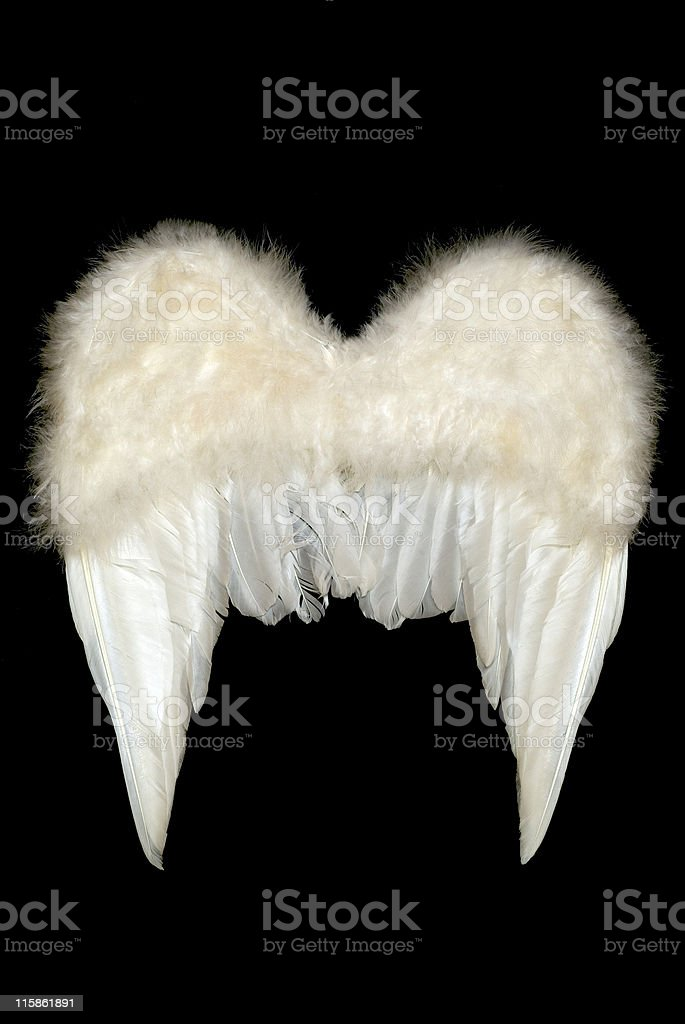 Angels Wings back view royalty-free stock photo