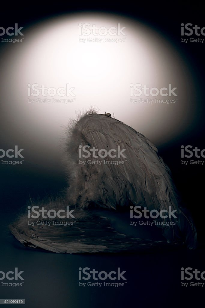 angel's wings on white background with glow stock photo