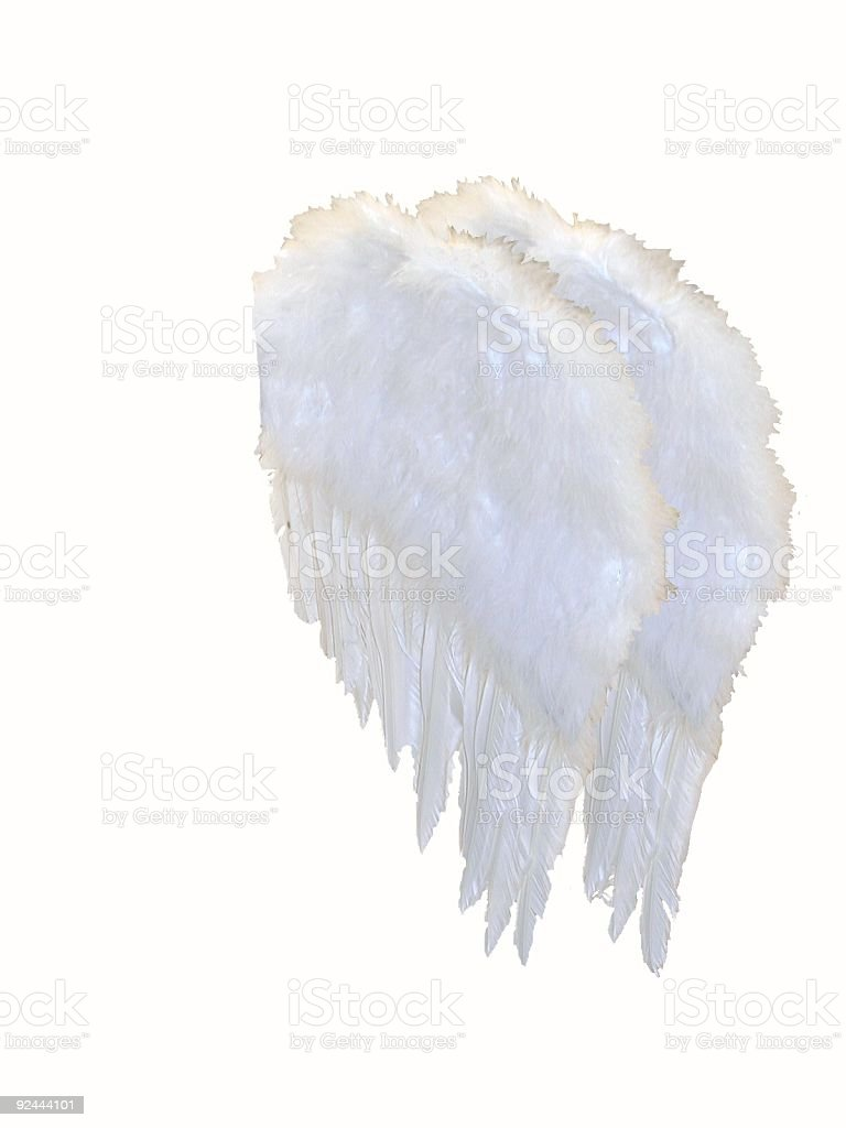 Angels Wings - Side view royalty-free stock photo