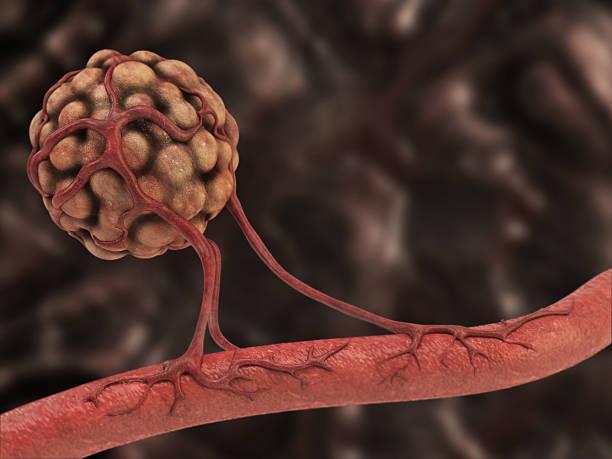 Angiogenesis stock photo