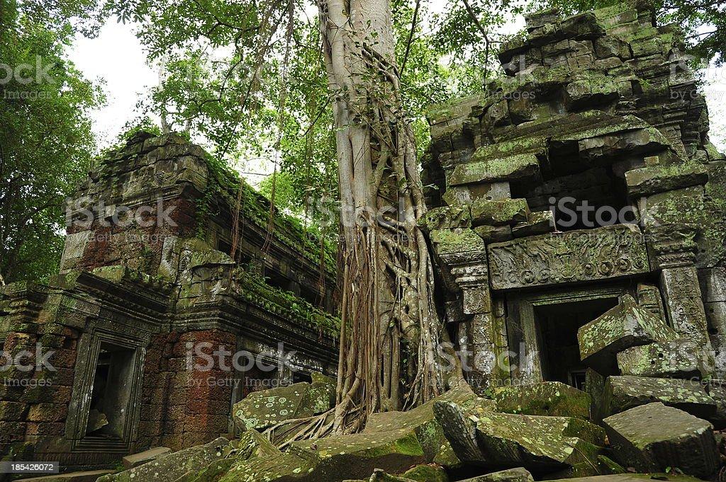 Angkor Ancient Temple of Angkor Thom in Cambodia royalty-free stock photo