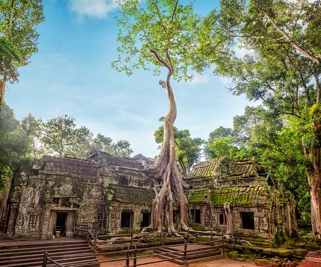 istock Angkor Ta Prohm Temple of Angkor Thom in Cambodia 990208164