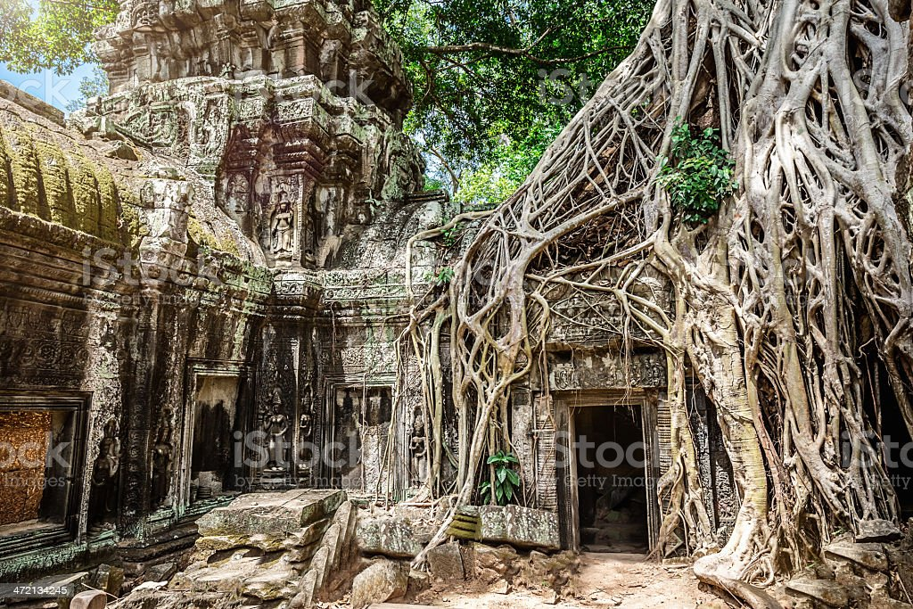 Angkor Temple Ruins in the Jungle, Cambodia royalty-free stock photo