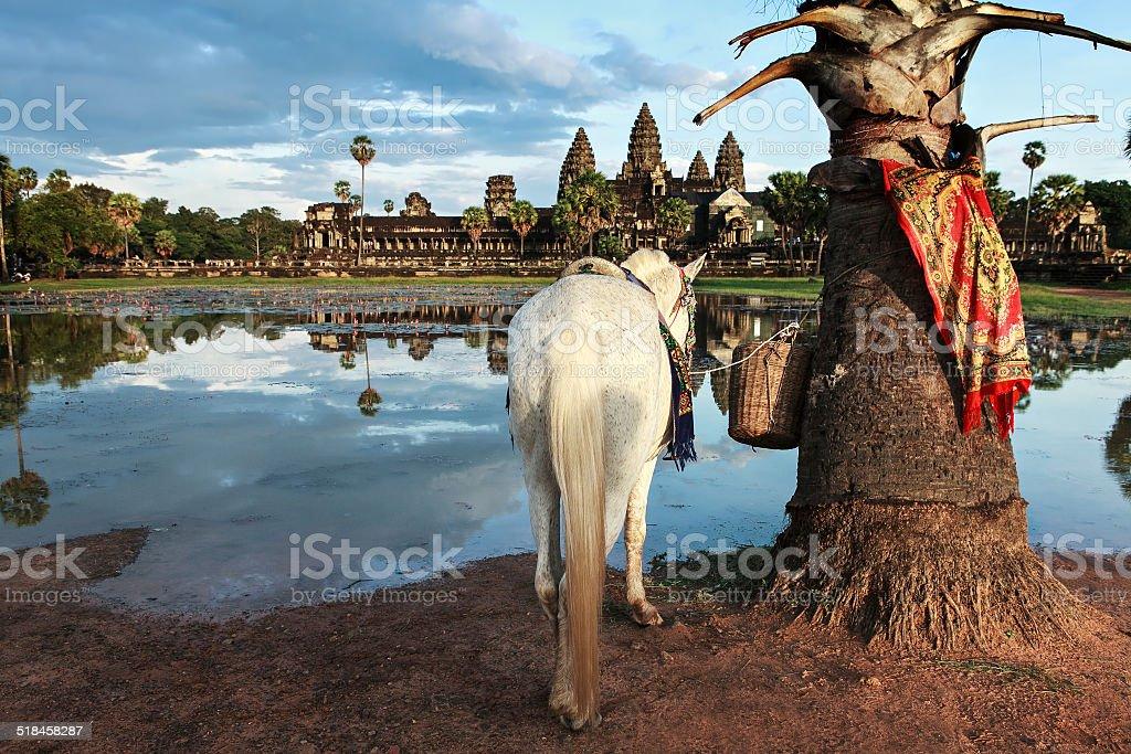 angkor vat temple stock photo