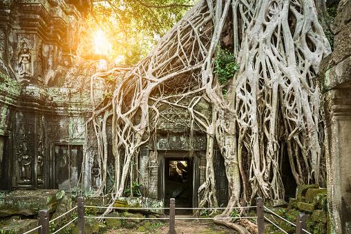 istock Angkor Wat, Cambodian Temple 502257932