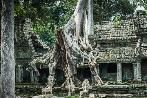 istock Angkor Wat, Cambodian Temple Ruins 532020001