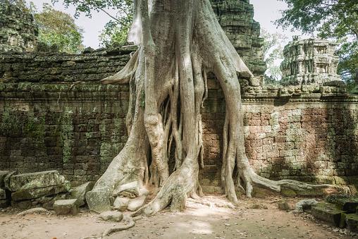 istock Angkor Wat, Cambodian Temple Ruins 611095914