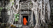 Angkor Wat monk. Ta Prom Khmer ancient Buddhist temple in jungle forest. Famous landmark, place of worship and popular tourist travel destination in Asia