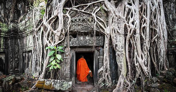 angkor wat monje.  ta facultades khmer antigua templo budista - hermano fotografías e imágenes de stock