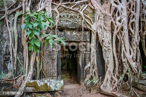 Angkor Wat, famous Ta Prohm Temple. Giant jungle trees growing over the ancient ruins of the Ta Prohm Temple. The famous Ta Prohm temple is one of the most visited complexes in Cambodia's Angkor Wat Region. Ta Prohm, Angkor Wat, Siem Reap, Cambodia, South East Asia