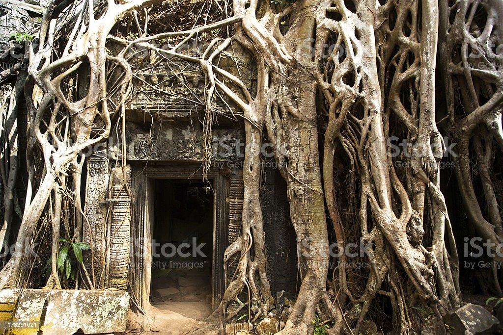 Angkor Wat temple, Cambodia. stock photo