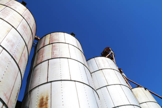 angle view looking up at three agricultural feed grain and corn silo buildings against a blue sky in rural heartland america perfect for industry farming and commercial agriculture marketing stock photo