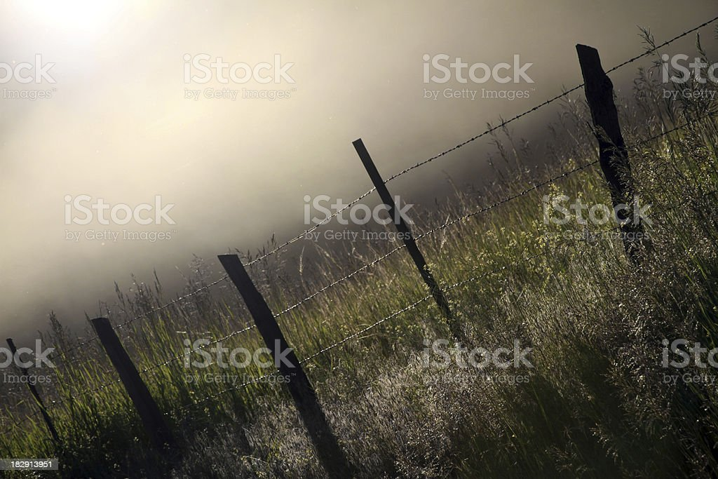 Angled Prairie royalty-free stock photo