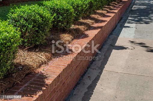 Angled view of new red brick retaining wall lined with boxwoods bordering a residential sidewalk, horizontal aspect