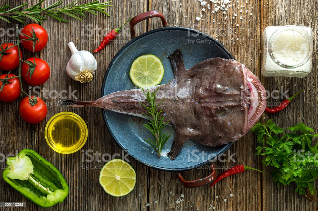 Angler fish stock photo