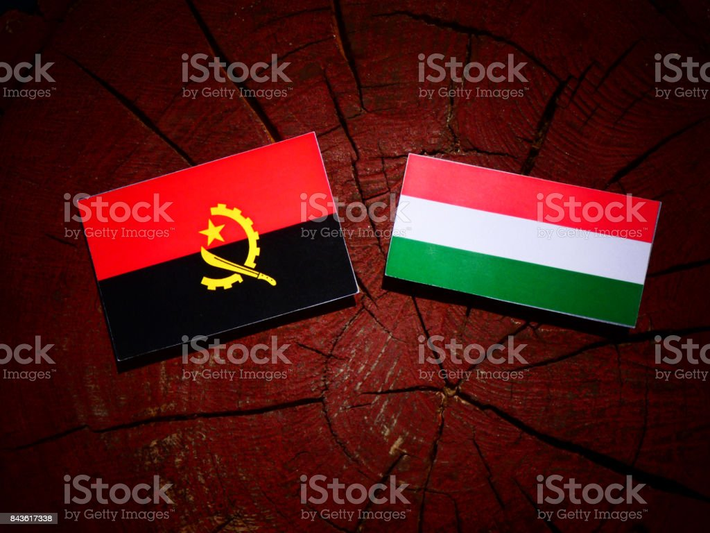 Angolan flag with Hungarian flag on a tree stump isolated stock photo