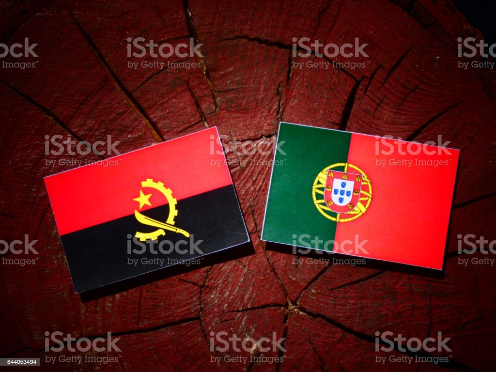 Angolan flag with Portuguese flag on a tree stump isolated stock photo