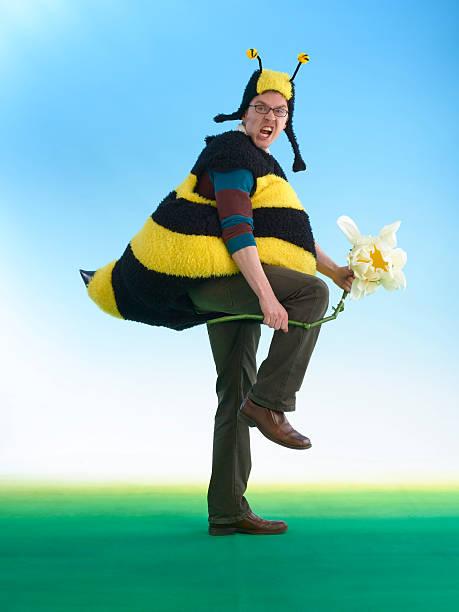 Angry Bee stock photo