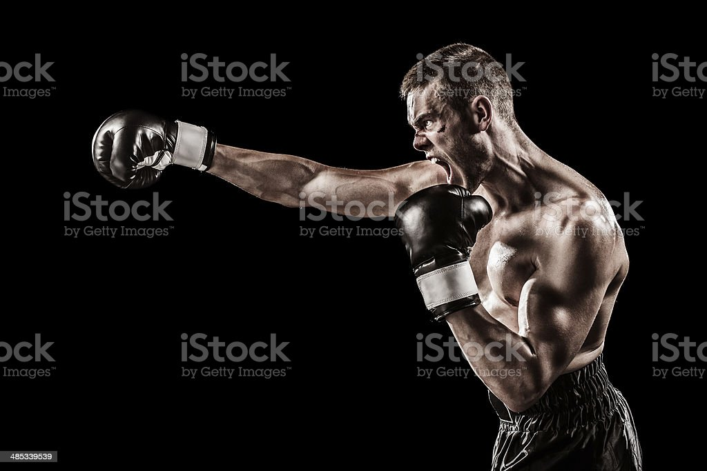 Angry boxer stock photo