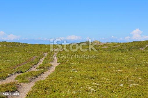 istock Anholt island, Denmark 544716408