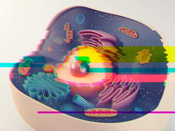 Animal cell glitch - foto de stock