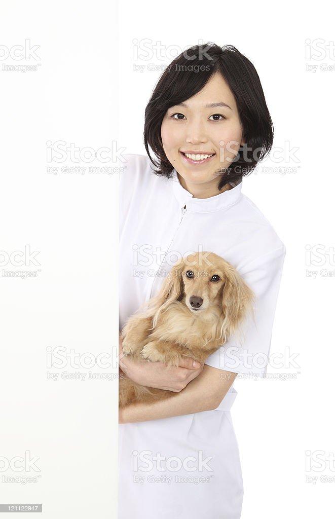 Animal Clinic royalty-free stock photo