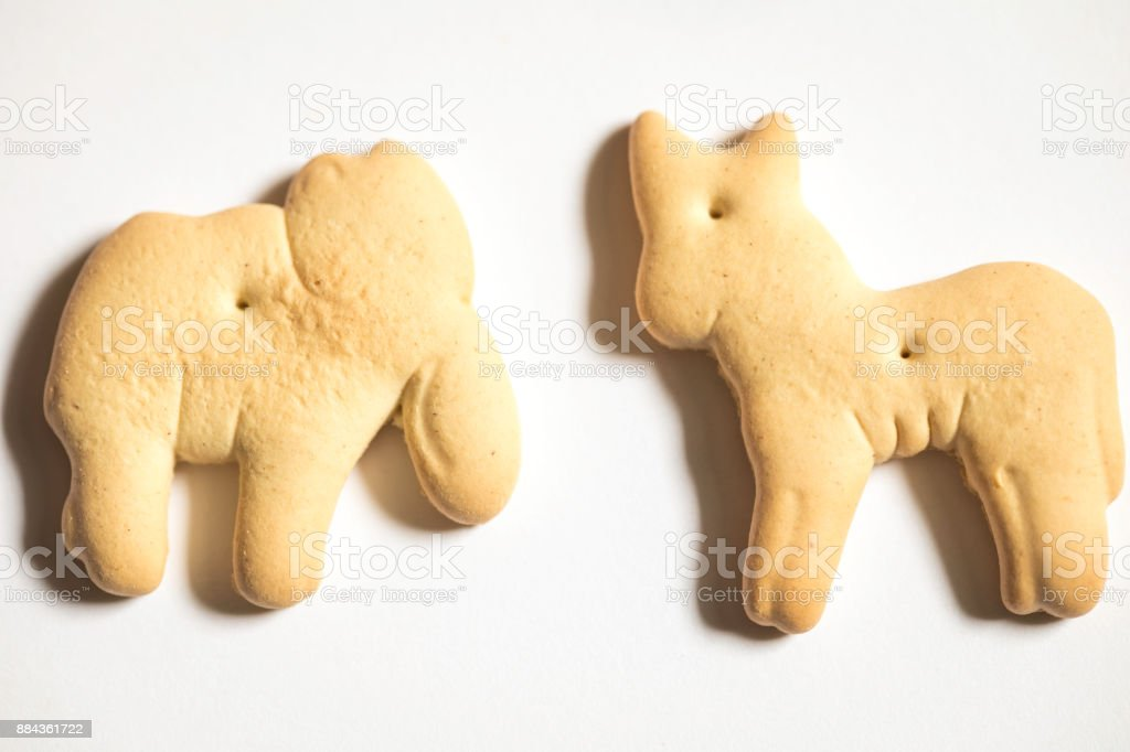 Animal cracker shot close up against a white background, elephant and...