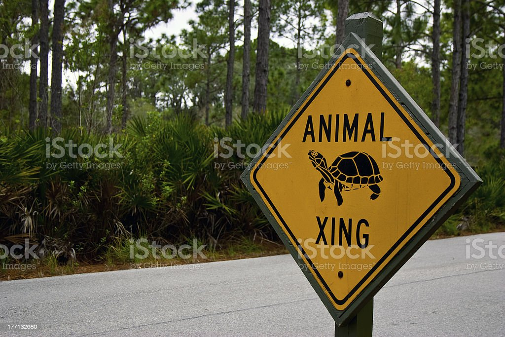Animal Crossing Sign royalty-free stock photo