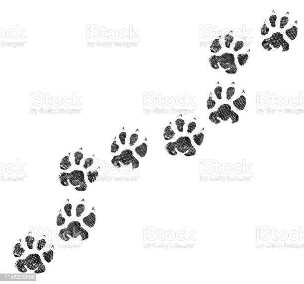 Animal footprint isolated on white background picture id1148309606?b=1&k=6&m=1148309606&s=612x612&h=05q8ngtkklk9bjirwq2oete5dpxhz9k8e475u5q323q=