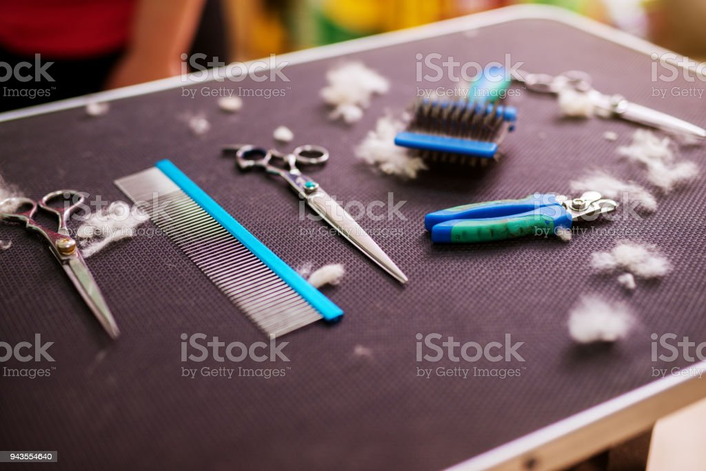 Animal hairdressing tools on a table surrounded by cut fur in an animal saloon. stock photo
