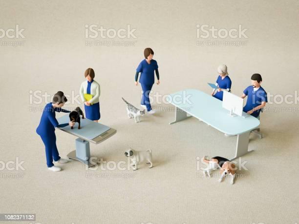 Animal hospital picture id1082371132?b=1&k=6&m=1082371132&s=612x612&h=x1zurdngncougdr5fohhgq8cuyyqpawbendnt0w640y=