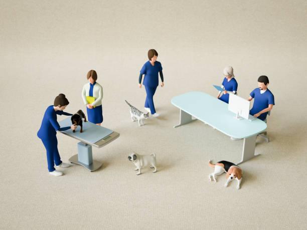 Animal hospital picture id1082371132?b=1&k=6&m=1082371132&s=612x612&w=0&h=4d w8rbbpf86mcsgv1e zls5l8w4vdsj0owohark4ca=