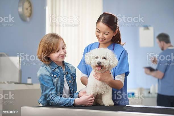 Animal hospital picture id539246937?b=1&k=6&m=539246937&s=612x612&h=4dqbbge8z7 69fuljkd1itlwrn32okx i9yaxpanf2s=