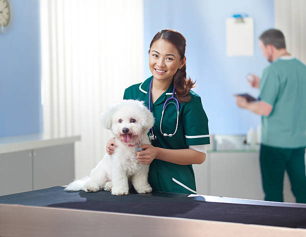 Animal hospital picture id539260147?b=1&k=6&m=539260147&s=612x612&w=0&h=ixoq0ravtbzx 092fp1h5g0mdannez6dvk63pzfkugm=