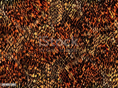 istock Animal mixed  background for background and wallpaper snake and leopard pattern 864587990