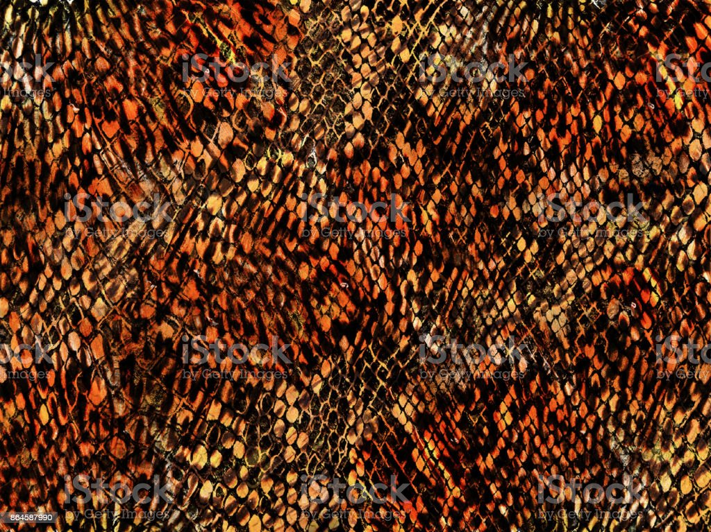 Animal mixed  background for background and wallpaper snake and leopard pattern stock photo