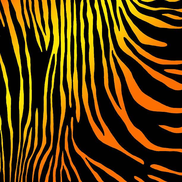 tierischen muster haut-tiger - giraffen tattoos stock-fotos und bilder