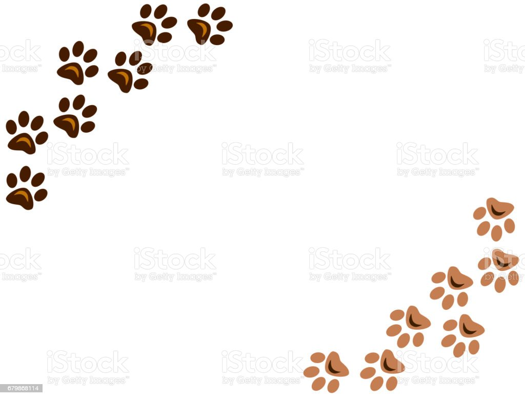 Animal paw prints on white background stock photo